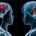 Alimentos que protegen tu memoria